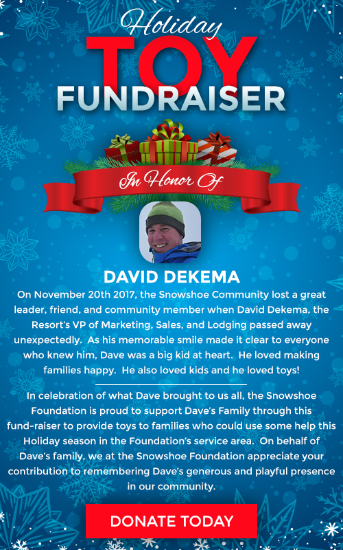 Holiday Toy Fundraiser - In Honor of David Dekema